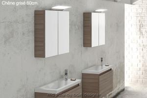 Armoire miroir double porte AM60